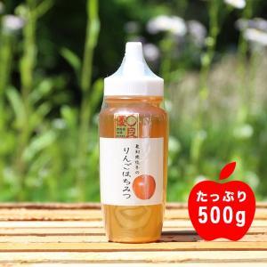 はちみつ 国産 りんご蜂蜜500g RG500/坂井養蜂場 ※メーカー直送のため、代引き不可 ハチミツ|enteron-kagu-shop