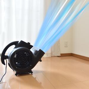 ストームファンモナイト サンコー 超強力!台風クラスの床用送風機 送風機 家庭用 100V サーキュレーター 換気 乾燥 強力 床用 超強力 梅雨 C-SFB21B 扇風機|enteron-shop2