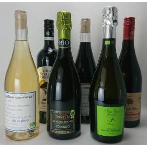 桜屋酒店 お勧め オーガニックワイン6本セット entia