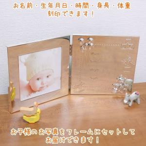 ベビーフレーム ベビーフォトフレーム 名入れ  (お名前・生年月日・出生時間・身長・体重) 2面ブック型 おもちゃ|entiere
