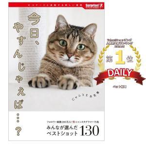 今日、やすんじゃえば…? サプライズBOOK ネコ 猫 写真 本 書籍 写真集 コンビニ本 インスタ 人気猫 癒し かわいい