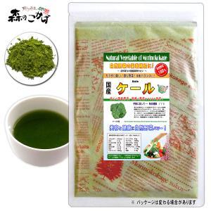 国産 ケール 粉末 100g けーる パウダー 野菜粉末 送料無料 ポイント消化 森のこかげ|epicot