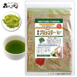 国産 ブロッコリー 粉末 100g ぶろっこりーパウダー 野菜粉末 送料無料 ポイント消化 森のこかげ|epicot