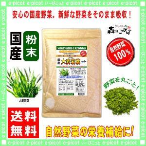 国産 大麦若葉 粉末 300g おおむぎわかば パウダー 業務用 野菜粉末 送料無料 森のこかげ|epicot