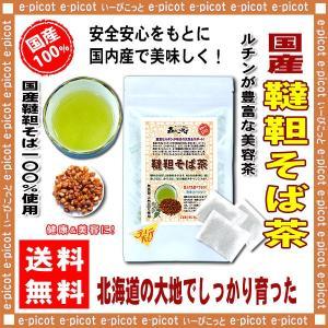 国産 韃靼そば茶 5g×20p ティーバッグ 北海道 生まれの香ばしい粒揃い 送料無料 森のこかげ 健やかハウス