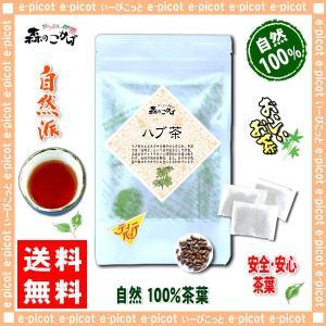 ハブ茶 5g×20p  ティーバッグ はぶ茶 決明子 ケツメイシ 100% 送料無料 森のこかげ 健やかハウス