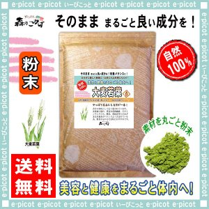 大麦若葉茶 粉末 500g おおむぎわかば パウダー 青汁 送料無料 森のこかげ|epicot