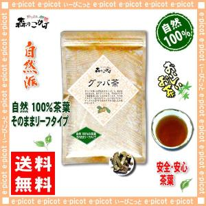 グァバ茶 200g ガバ茶  グアバ茶 送料無料 ポイント消化 森のこかげ epicot