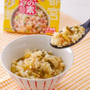 餃子の具でまぜご飯の素を作ってみた まぜご飯の素 餃子  栃木土産 宮島醤油 epinardnasu