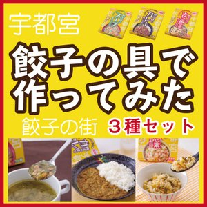 餃子の具で作ってみた 3種セット まぜご飯の素 スープ 餃子 カレー 栃木土産 宮島醤油 epinardnasu