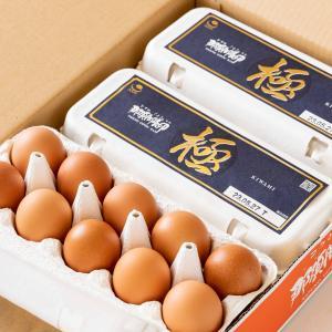 卵 鶏卵 ブランド卵 稲見商店 特選 那須御養卵 極 30個入