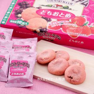 カントリーマアム とちおとめ 16枚入 苺 いちご イチゴ 栃木限定|epinardnasu