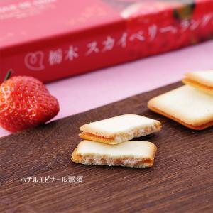 スカイベリー ラングドシャ 18個入  いちご 苺 イチゴ ...