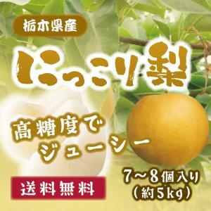 送料無料 梨 にっこり 箱 6〜8玉入 5kg epinardnasu