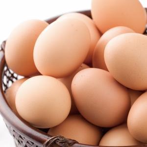 卵 鶏卵 ブランド卵 稲見商店 特選 那須御養卵 極 10個入 epinardnasu