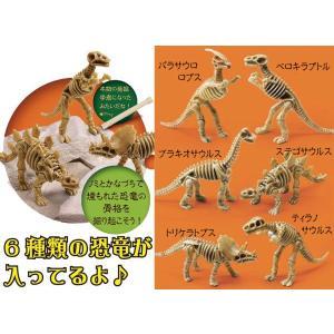 体験イベントキット 恐竜発掘 30人用|epkyoto