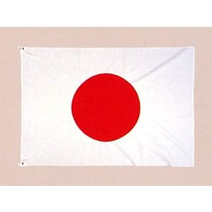 国旗 1m20cm×1m80cm epkyoto