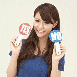 アンサープレート YESとNO 10枚セット    パーティーグッズ・パーティー雑貨・クイズ大会|epkyoto