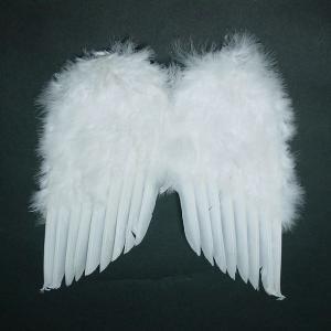 天使の羽根・悪魔の羽根 28cm×34cm|epshop