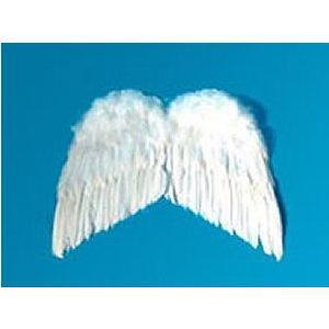 天使の羽根・悪魔の羽根 38cm×50cm|epshop