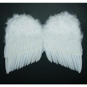 天使の羽根・悪魔の羽根 40cm×60cm|epshop