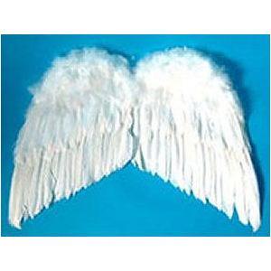 天使の羽根・悪魔の羽根 50cm×76cm|epshop