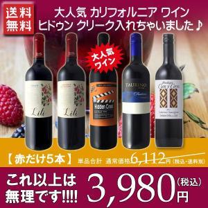ワインセット 赤 第10弾 飲み比べ 採算度外視 美味しいデイリーワイン カベルネ ソーヴィニヨン ピノ ノワール 赤ワイン 5本セット 1本当たり667円 wineset