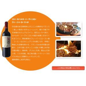 ワインセット 赤 人気のヒドゥンクリークが入った美味しいデイリーワイン カベルネ メルロー ジンファンデル シラー等 採算度外視 5本セット wineset erabell-wine 05