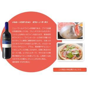 ワインセット 赤 人気のヒドゥンクリークが入った美味しいデイリーワイン カベルネ メルロー ジンファンデル シラー等 採算度外視 5本セット wineset erabell-wine 07