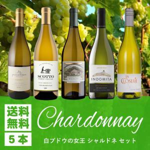 ワイン名 【送料無料】「白ワインの女王」シャルドネ100%の白ワイン5本セット! 生産者 商品ページ...