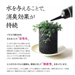 エコポチ専用アイテム 消臭元 eco-pochi re-plus (eco-pochi) erande 06