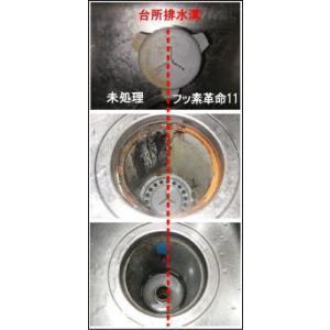 防汚コート剤 フッ素革命11ライト(30ml)スポンジ・クロスセット|erande|03