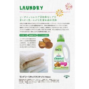 洗濯洗剤 AlmaWin(アルマウィン) ランドリーリキッドクリナッツ|erande|02