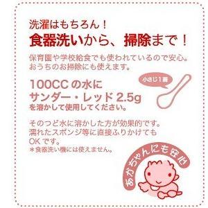 洗濯洗剤 サンダー・レッド純粉石鹸(Thunder Red) 5kg|erande|04