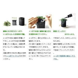 エコポチ専用アイテム 充填材(植え込み材) (eco-pochi)|erande|04