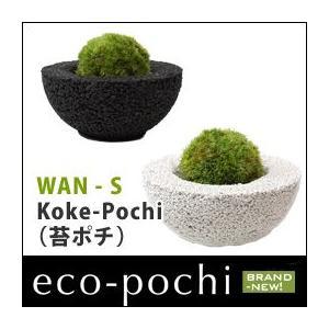 Koke-Pochi(苔ポチ) わん Sサイズ eco-pochi(エコポチ)|erande