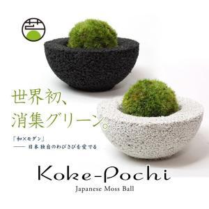 Koke-Pochi(苔ポチ) わん Sサイズ eco-pochi(エコポチ)|erande|02