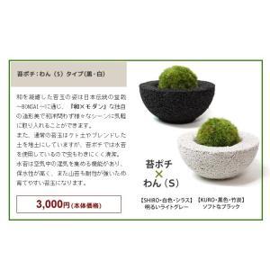 Koke-Pochi(苔ポチ) わん Sサイズ eco-pochi(エコポチ)|erande|03