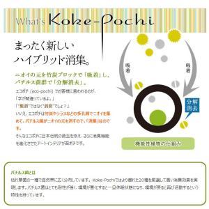 Koke-Pochi(苔ポチ) わん Sサイズ eco-pochi(エコポチ)|erande|04