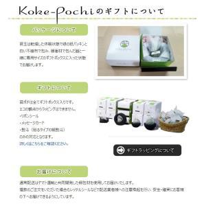 Koke-Pochi(苔ポチ) わん Sサイズ eco-pochi(エコポチ)|erande|06