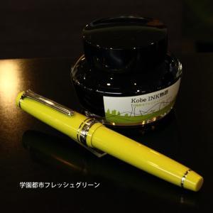 NAGASAWA オリジナル万年筆 プロギアスリム besideカラー オレンジ/ライトブルー/ピンク/ライトグリーン プロフェッショナルギアスリムモデル|erfolg|03
