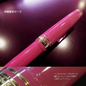 NAGASAWA オリジナル万年筆 プロギアスリム besideカラー オレンジ/ライトブルー/ピンク/ライトグリーン プロフェッショナルギアスリムモデル|erfolg|05