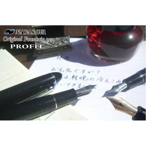 NAGASAWA オリジナル万年筆  プロフィット ブラック (ナガサワ/14金ペン先/セーラー万年筆)|erfolg