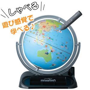 レイメイ しゃべる地球儀 国旗付き トイ 25cm OYV403|erfolg
