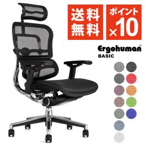 エルゴヒューマン ( ergohuman ) ベーシック/ ヘッドレスト付 オフィスチェア 椅子 EH-HAM/EGP 【完成品】|ergohuman