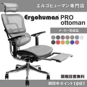 エルゴヒューマン プロ オットマン内蔵型 Ergohuman Pro オフィスチェア 腰痛対策 高機能 ラチェット式オットマン高さ調節タイプ /EGP 【完成品でお届け】|ergohuman