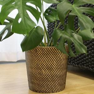 モダンな雰囲気のシンセティックラタン 鉢カバー  シンセティックラタンを天然のラタンに編みこんで作ら...