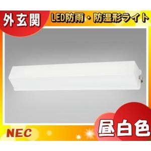 NEC HWDG22003(MP)多目的灯 防雨・防湿形 昼白色 810lm・10W サイズ664mm×104mm 天井・壁付兼用「送料区分B」 esco-lightec