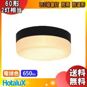 「送料無料」NEC SXM-LE262718L LED小型シーリングライト 電球色 650lm(一般電球60形2灯相当の明るさ)防雨・防湿形 屋外用「SXMLE262718L」 esco-lightec