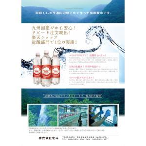 北斗九州あわ水 炭酸水500mlペットボトルx...の詳細画像2